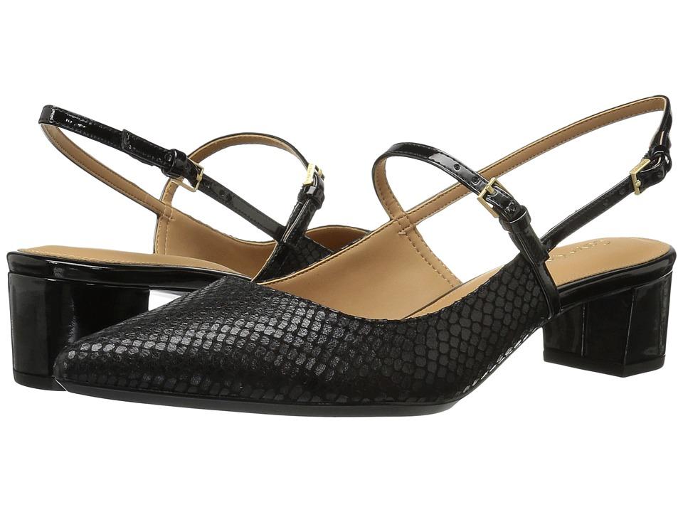 Calvin Klein Georgette (Black Snake Print Leather) Women