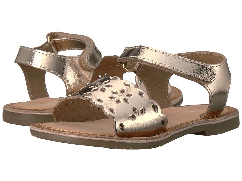 Pazitos - Tic-Tac-Toe (Toddler) (Gold) Girl's Shoes