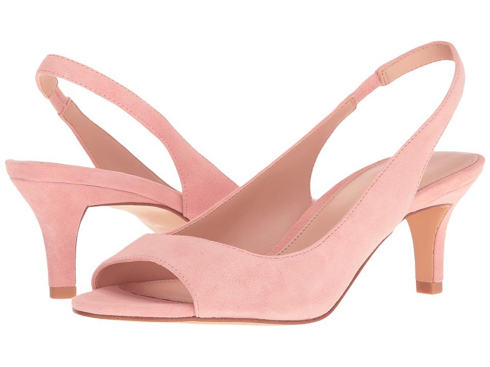 Pelle Moda - Belini (Pale Pink Suede) High Heels
