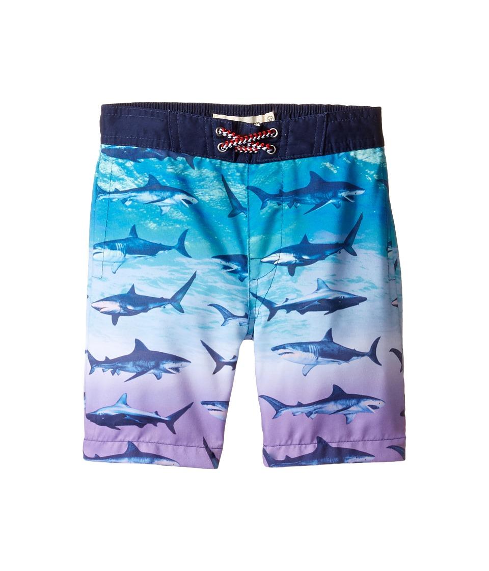 Appaman Kids - Blacktip Shark Swim Trunks (Toddler/Little Kids/Big Kids) (Teal) Boy's Swimwear