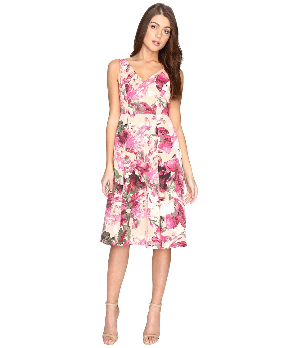 Adrianna Papell Faille Tea Length Fit and Flare (Apricot Cream Multi) Women