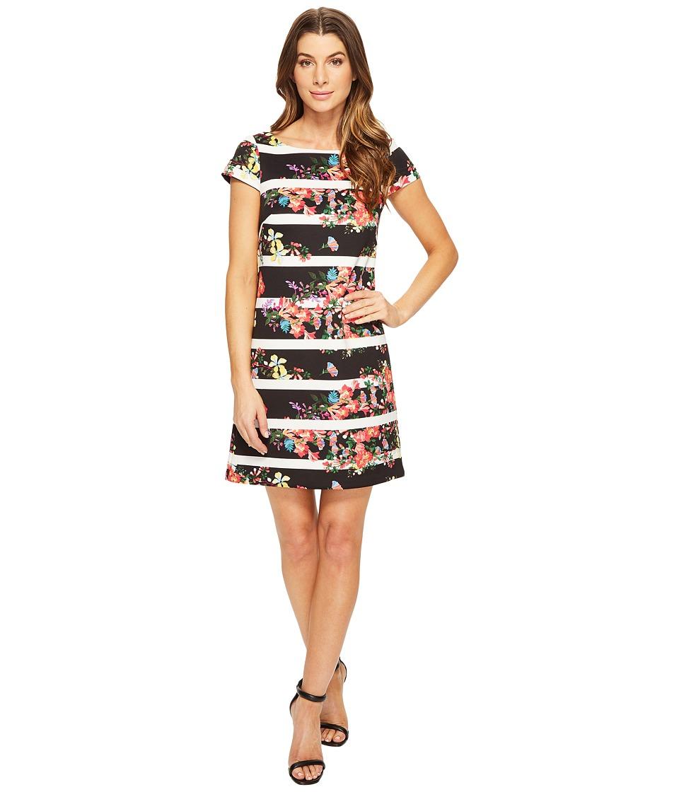 Adrianna Papell - Striped Shift Dress w/ Cap Sleeve (Black Multi) Women's Dress