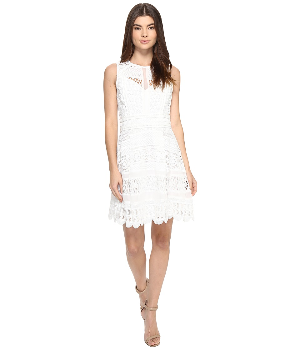 Adelyn Rae - Lace Fit and Flare Dress (Off-White) Women's Dress