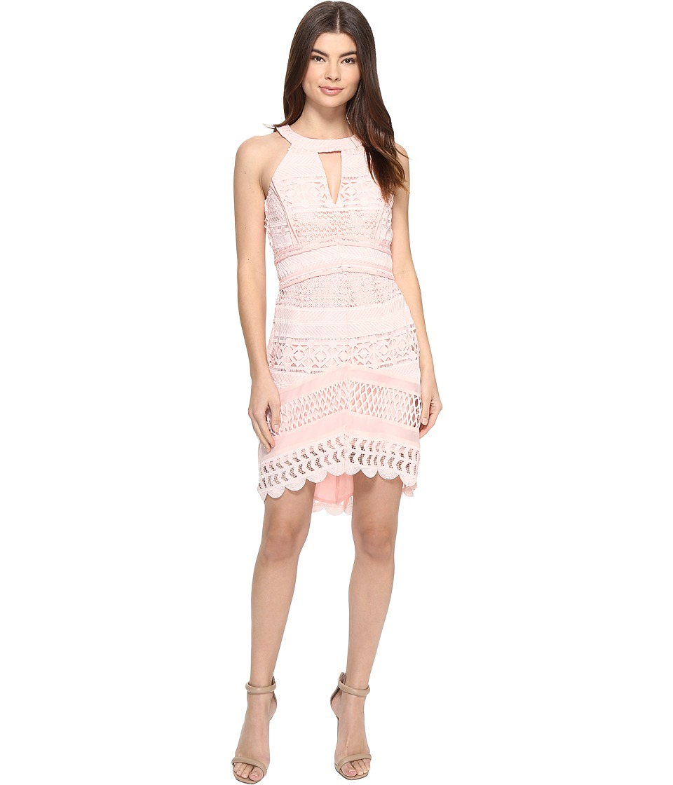 Adelyn Rae Fitted Lace Dress (Light Pink) Women