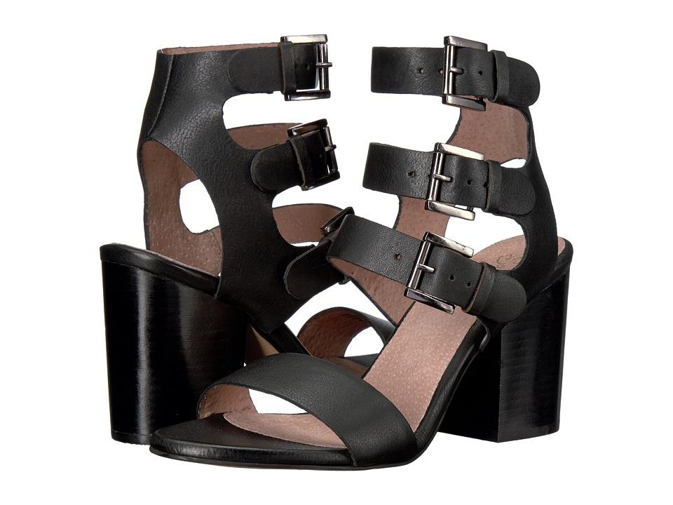 Seychelles - Dilly Dally (Black) High Heels