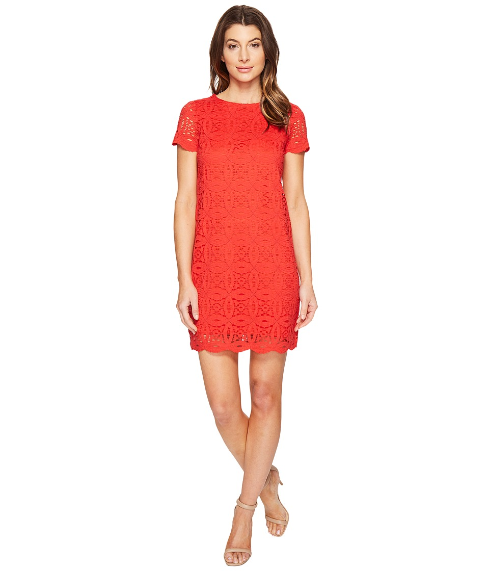 Maggy London - Geo Petal Lace Shift Dress (Firecracker) Women's Dress