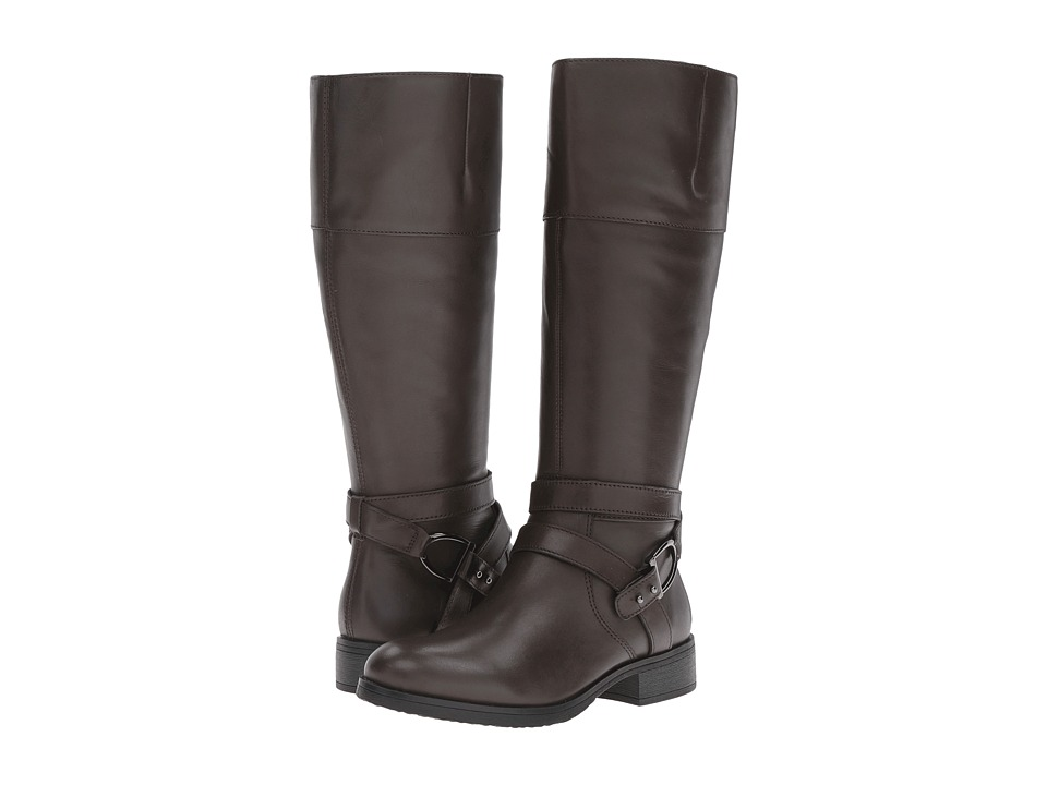 Bandolino - Tessi (Portobello/Portobello) Women's Boots