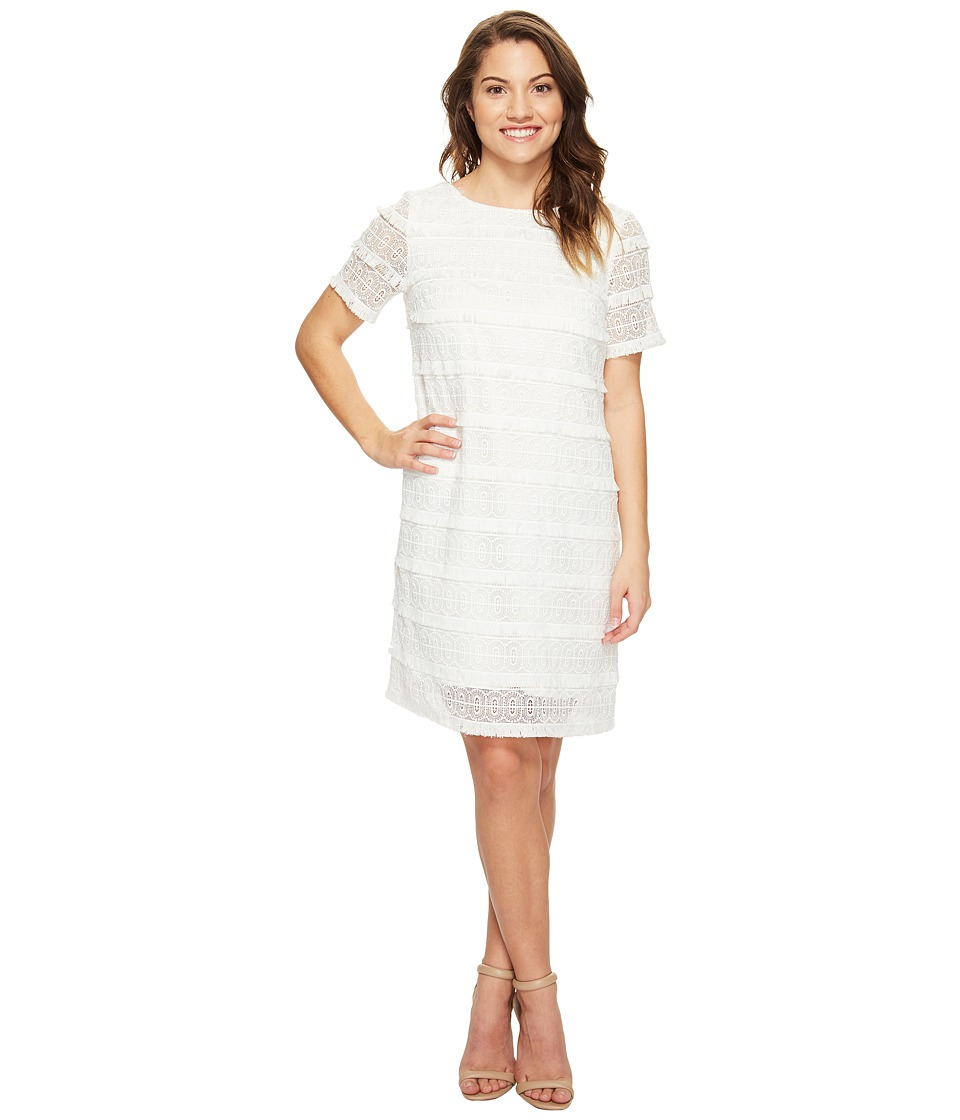Tahari by ASL Petite - Petite Fringed Lace Shift Dress (White) Women's Dress