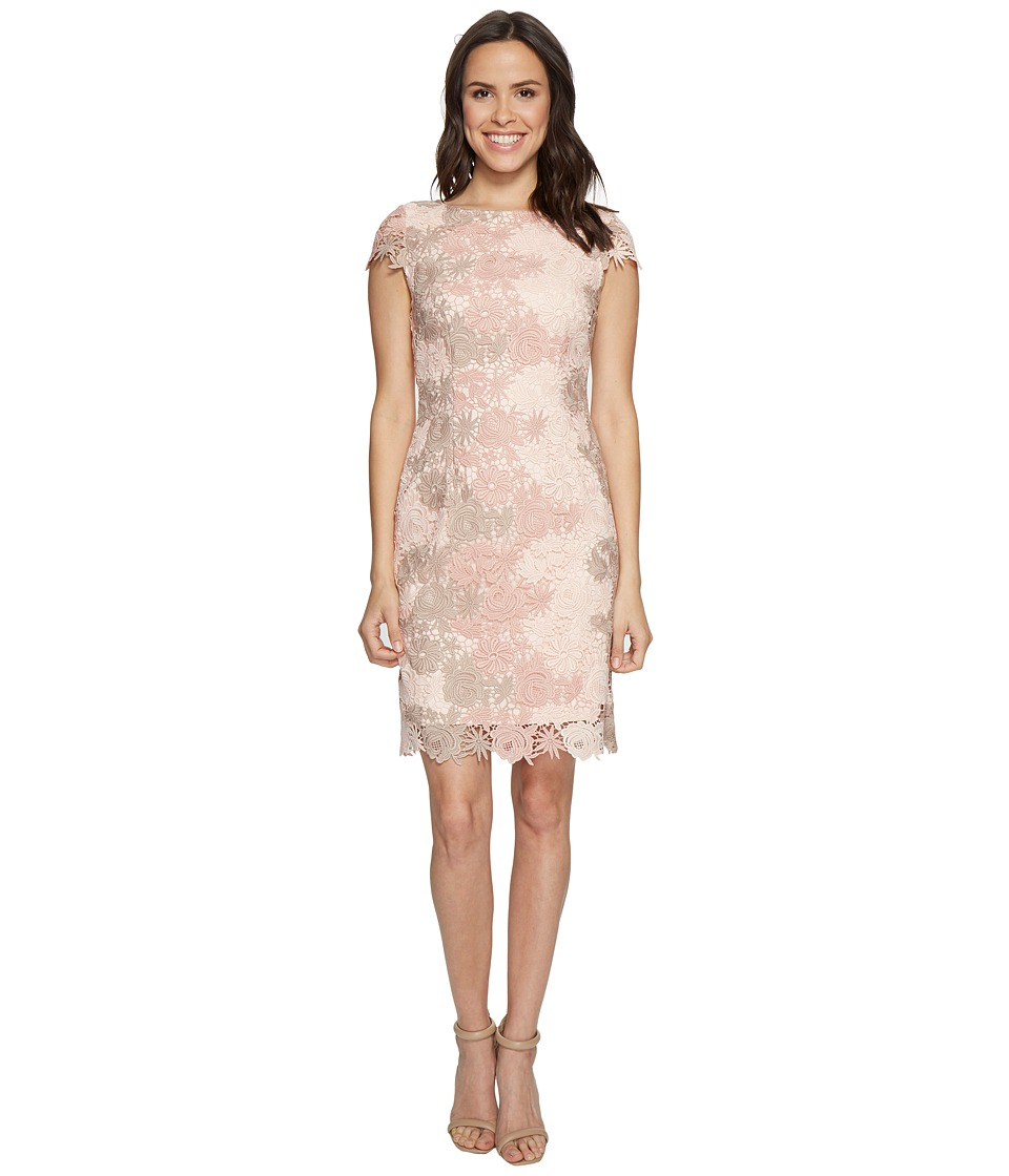 Tahari by ASL - Lace Cut Out Back Sheath Dress (Petal/Blush/Stone) Women's Dress