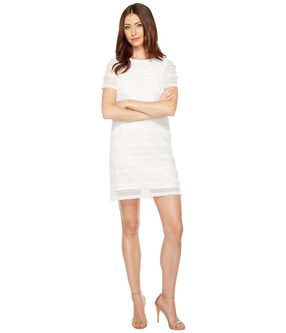 Tahari by ASL Fringe Lace Shift Dress (White) Women