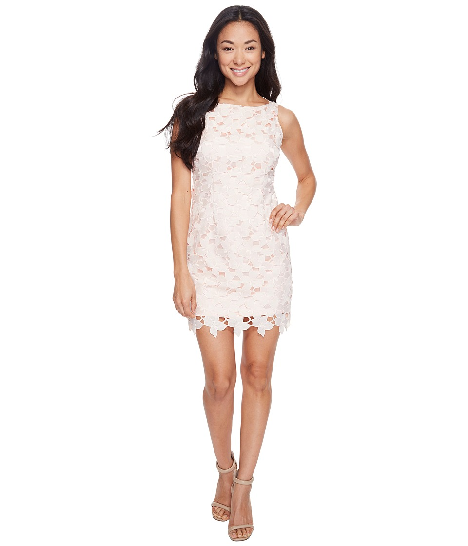 Tahari by ASL Petite - Petite Chemical Lace Sheath Dress (Blush Pink) Women's Dress