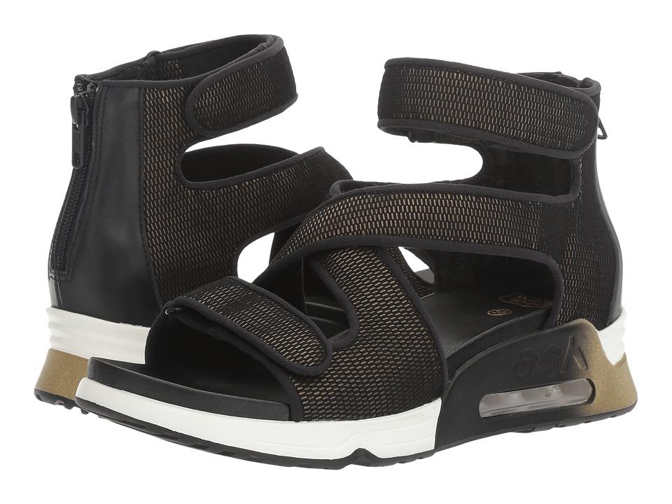 ASH - Lips (Black/Army Satin Net/Stretch) Women's Shoes