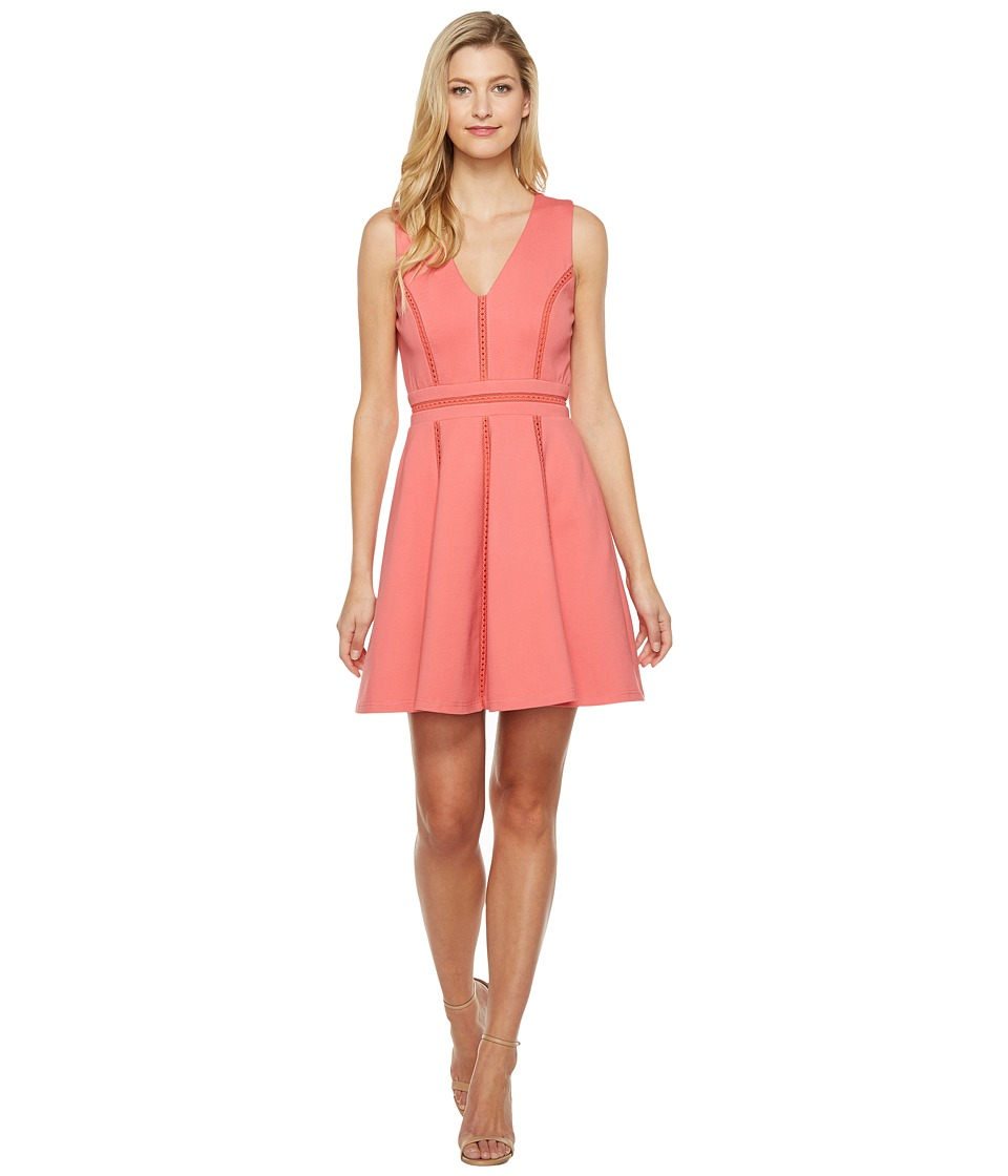 Adelyn Rae Pauline Knit Ponte Fit and Flare (Coral) Women