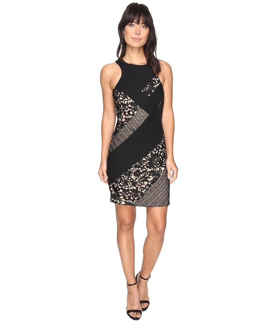 Adelyn Rae Loretta Woven Lace Bodycon Dress (Black/Nude) Women