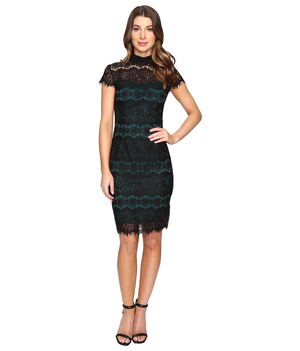 Sangria - Short Sleeve Lace Midi Sheath (Forest/Black) Women's Dress
