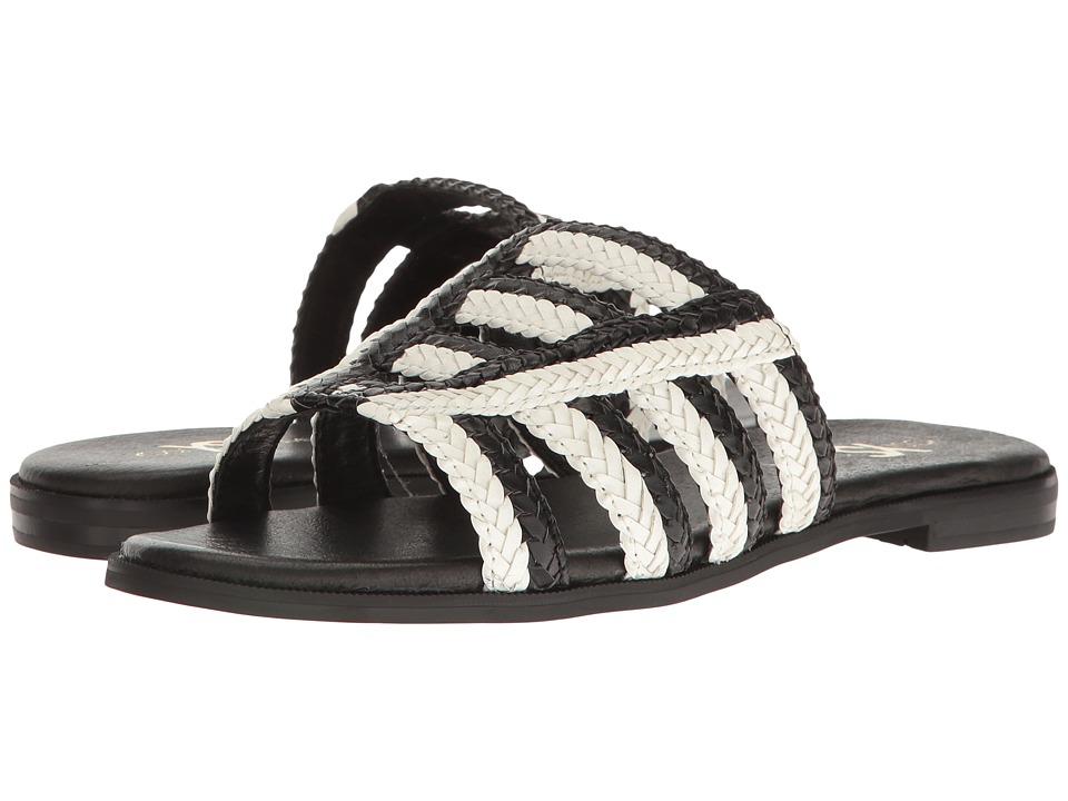 Yosi Samra - Molly (Black/White) Women's Flat Shoes