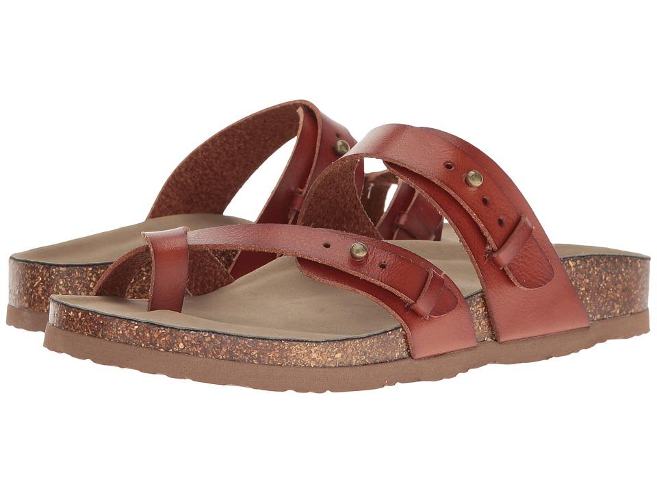 Madden Girl - Banditt (Cognac Paris) Women's Shoes