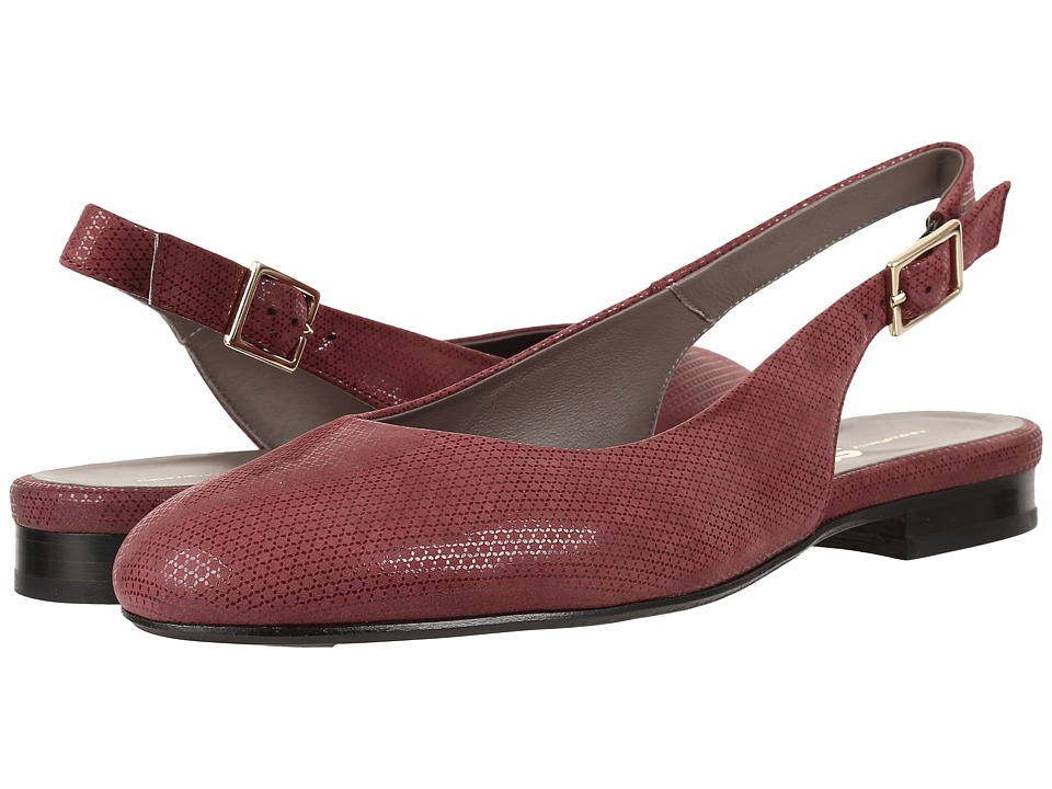SAS Chloe (Webster Wine) Women's Shoes