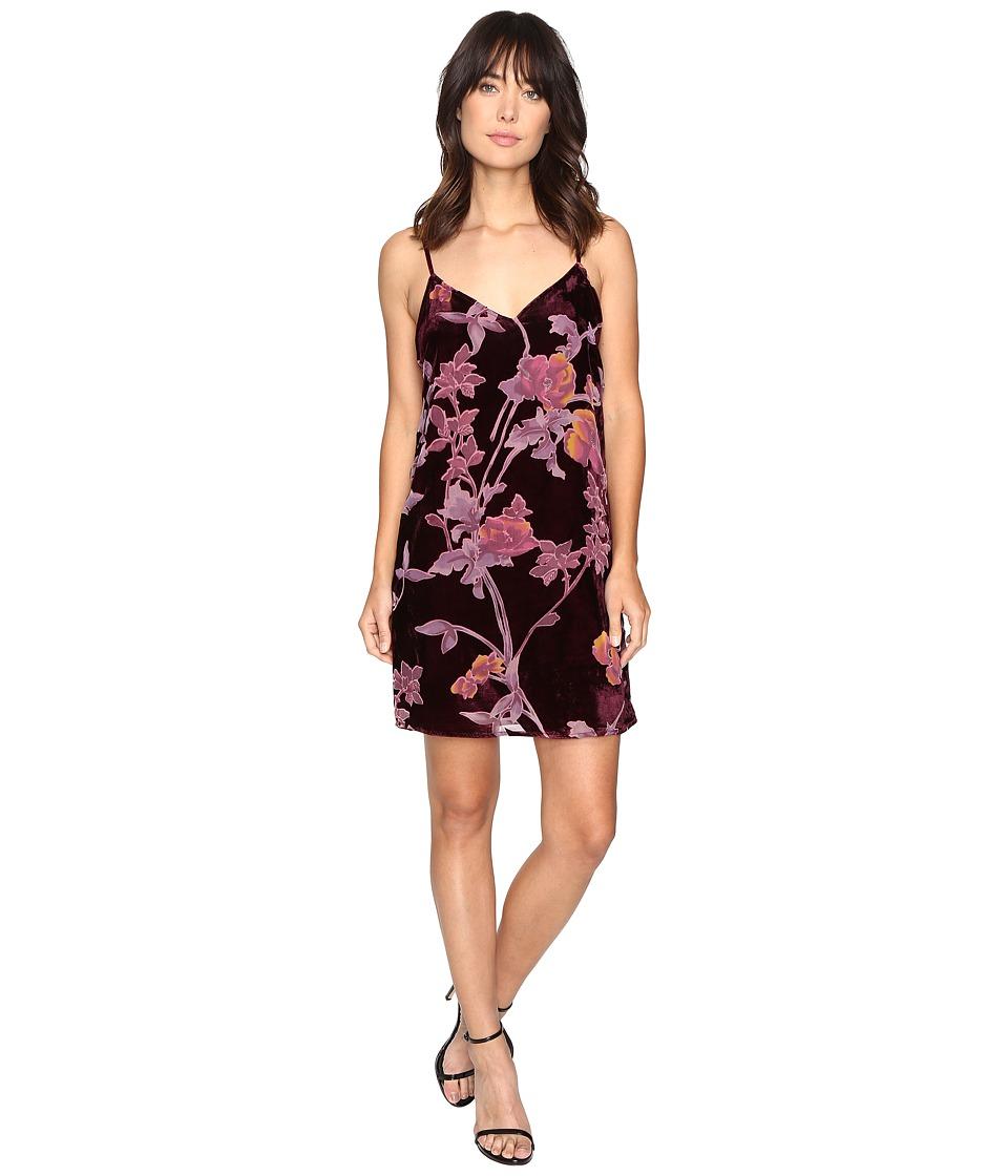 Brigitte Bailey - Kleo Spaghetti Strap Floral Velvet Dress (Wine) Women's Dress