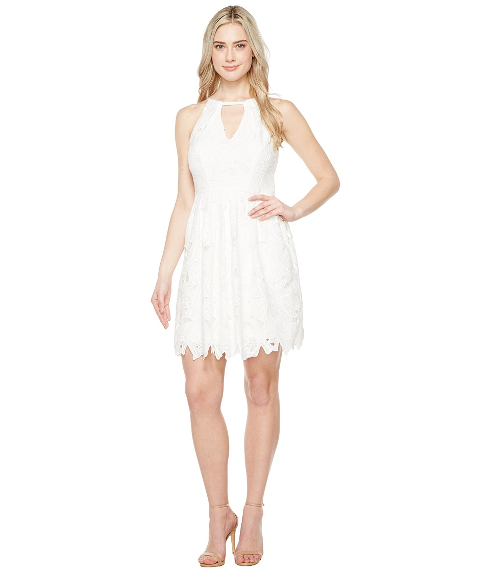 Adrianna Papell Celcilia Lace Fit and Flare Dress with Halter Neckline (White) Women