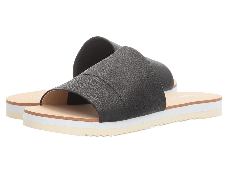 Splendid - Jazz (Black) Women's Shoes