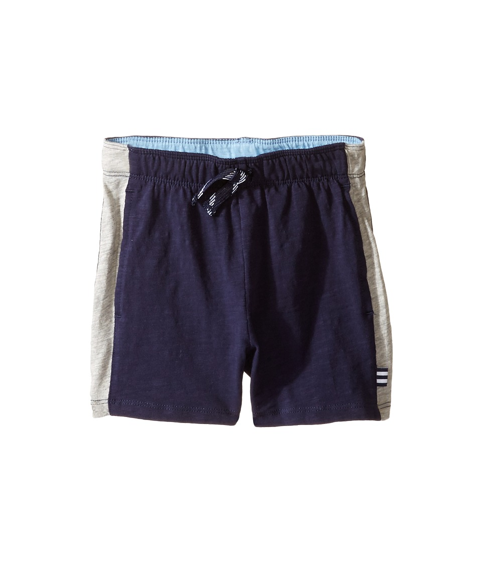 Splendid Littles - Always Active Shorts (Infant) (Navy) Boy's Shorts