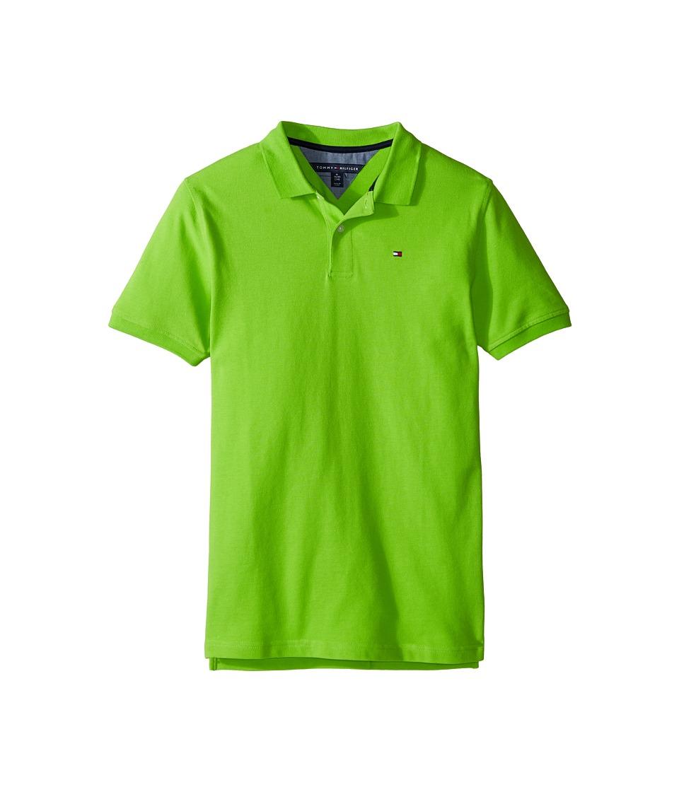 Tommy Hilfiger Kids - Ivy Polo (Big Kids) (Lime Tonic) Boy's Clothing
