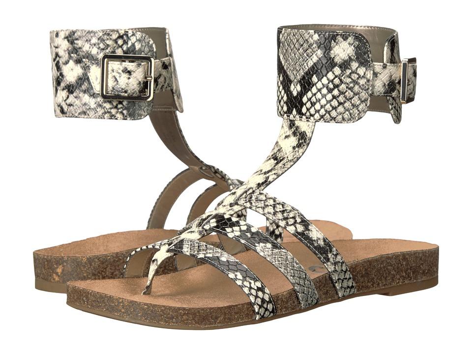 Circus by Sam Edelman - Katie (Cashmere Amazon Python) Women's Shoes
