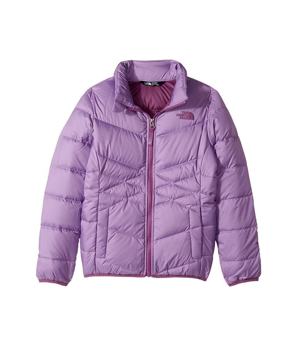 The North Face Kids Andes Down Jacket (Little Kids/Big Kids) (Bellflower Purple (Prior Season)) Girl