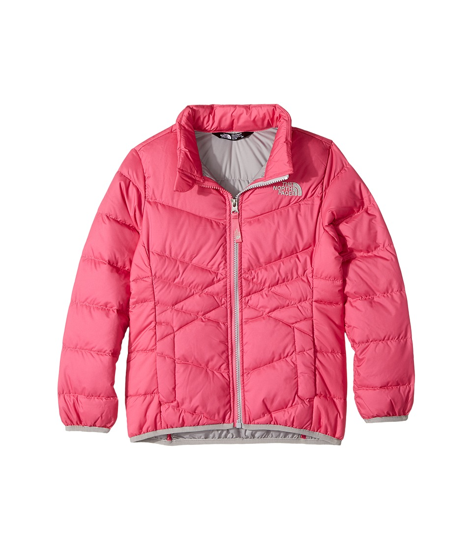 The North Face Kids Andes Down Jacket (Little Kids/Big Kids) (Petticoat Pink (Prior Season)) Girl