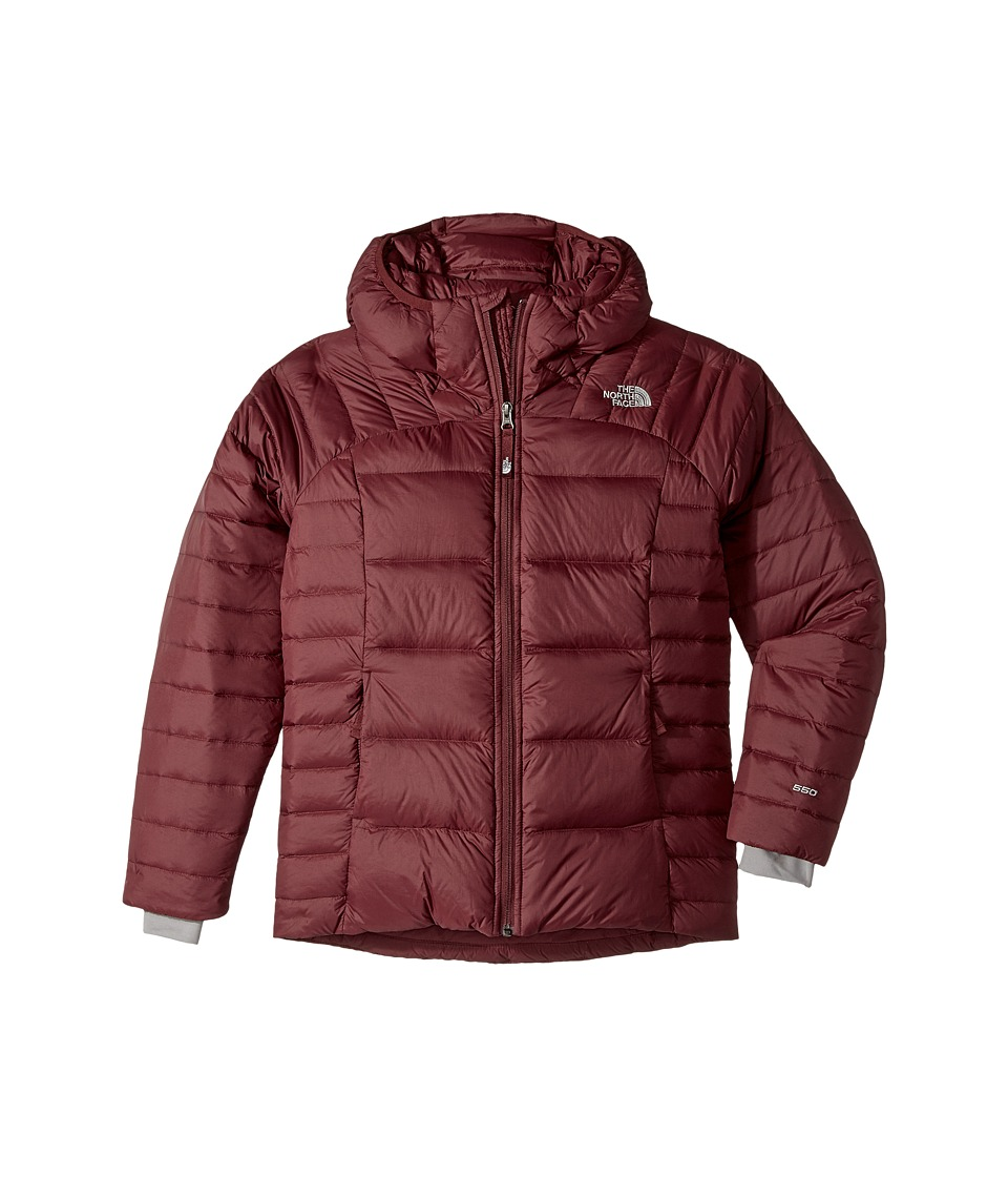 The North Face Kids Double Down Hoodie (Little Kids/Big Kids) (Zinfandel Red (Prior Season)) Girl