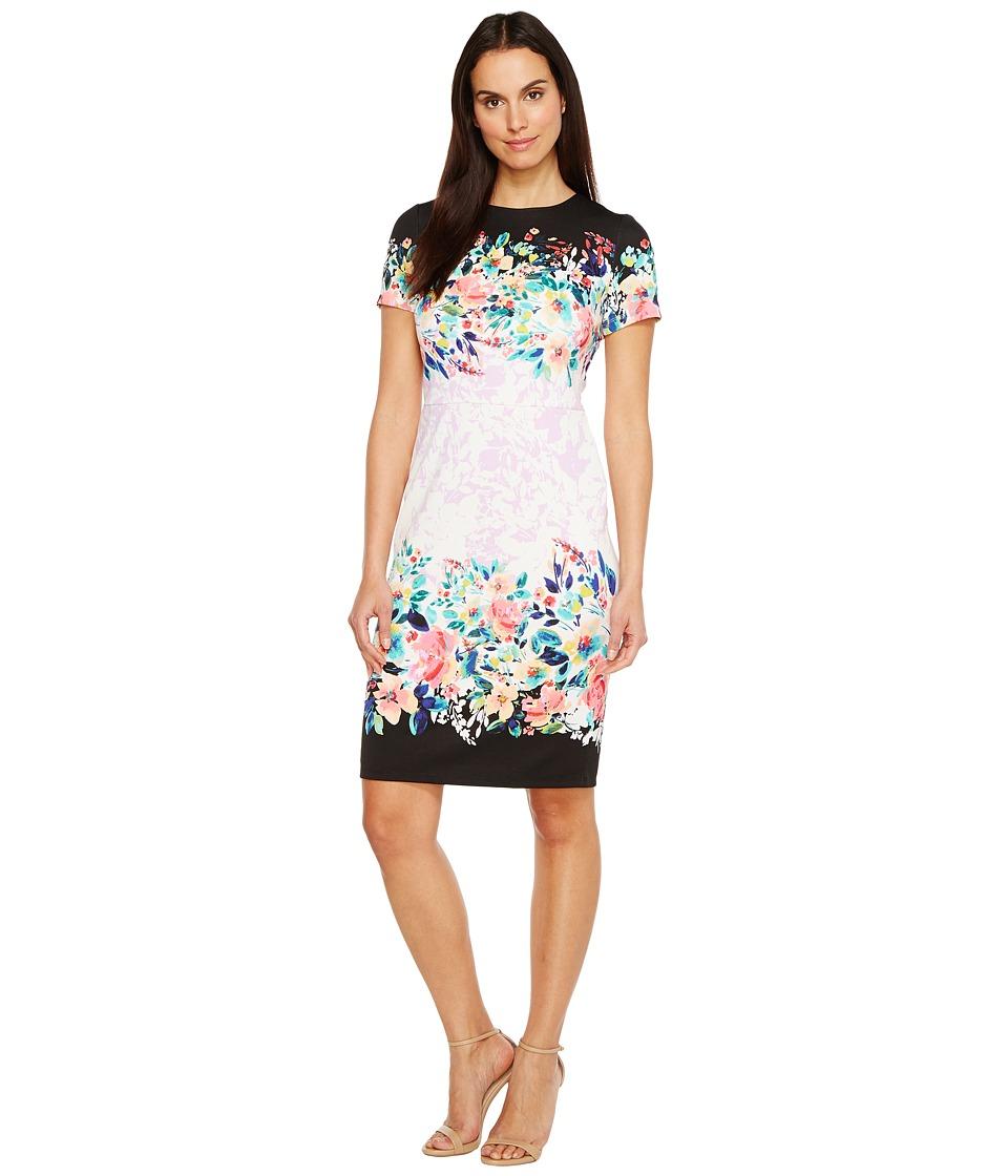Maggy London Scuba Midi Sheath Dress (White/Rose) Women