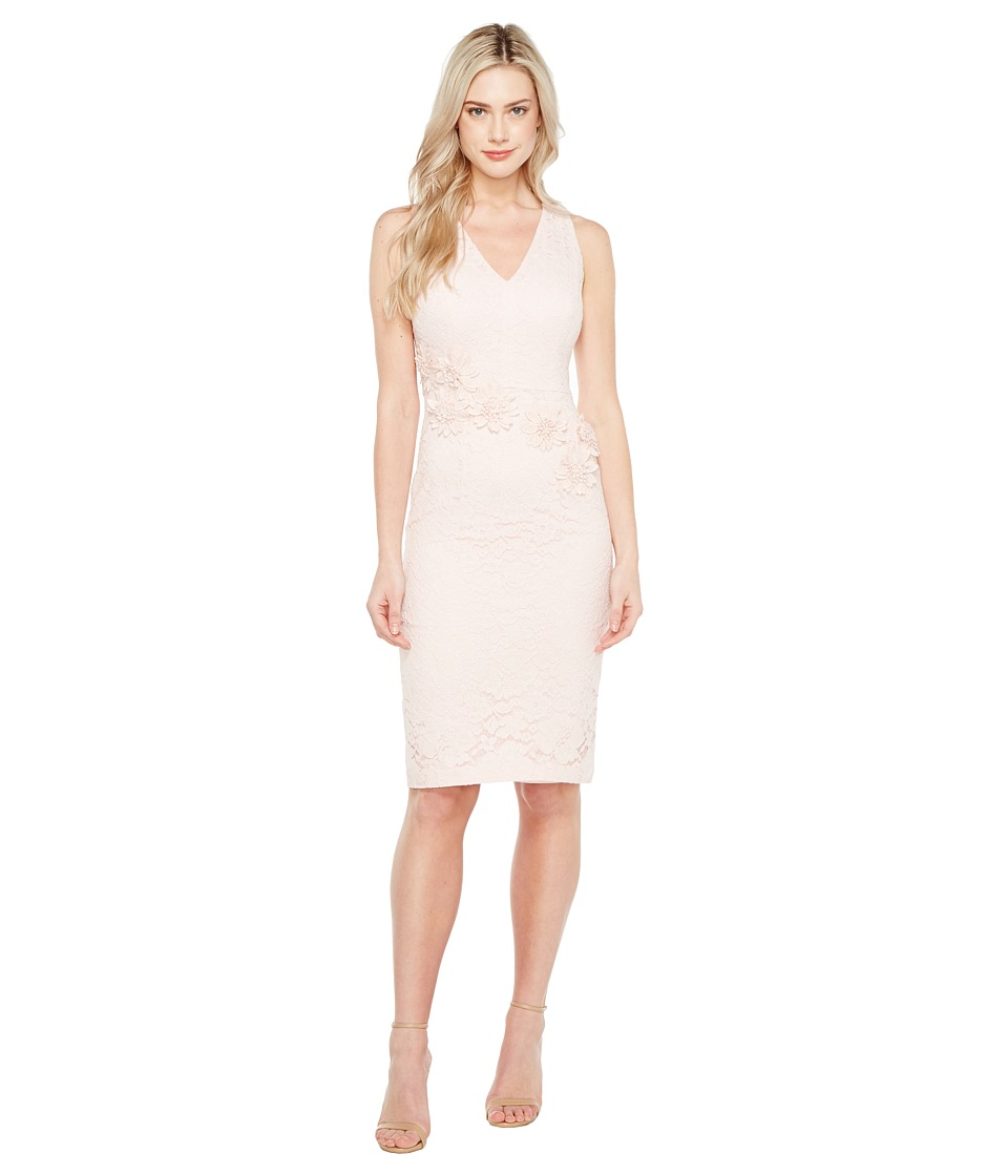 Maggy London - Rose Garden Lace V-Neck Sheathe Dress (Rose) Women's Dress