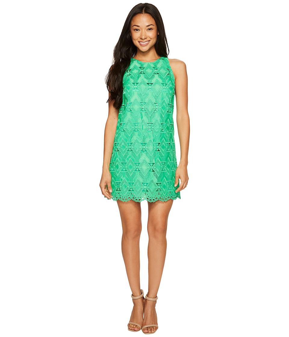 Tahari by ASL Petite Petite Geo Lace Trapeze Dress (Island Green) Women