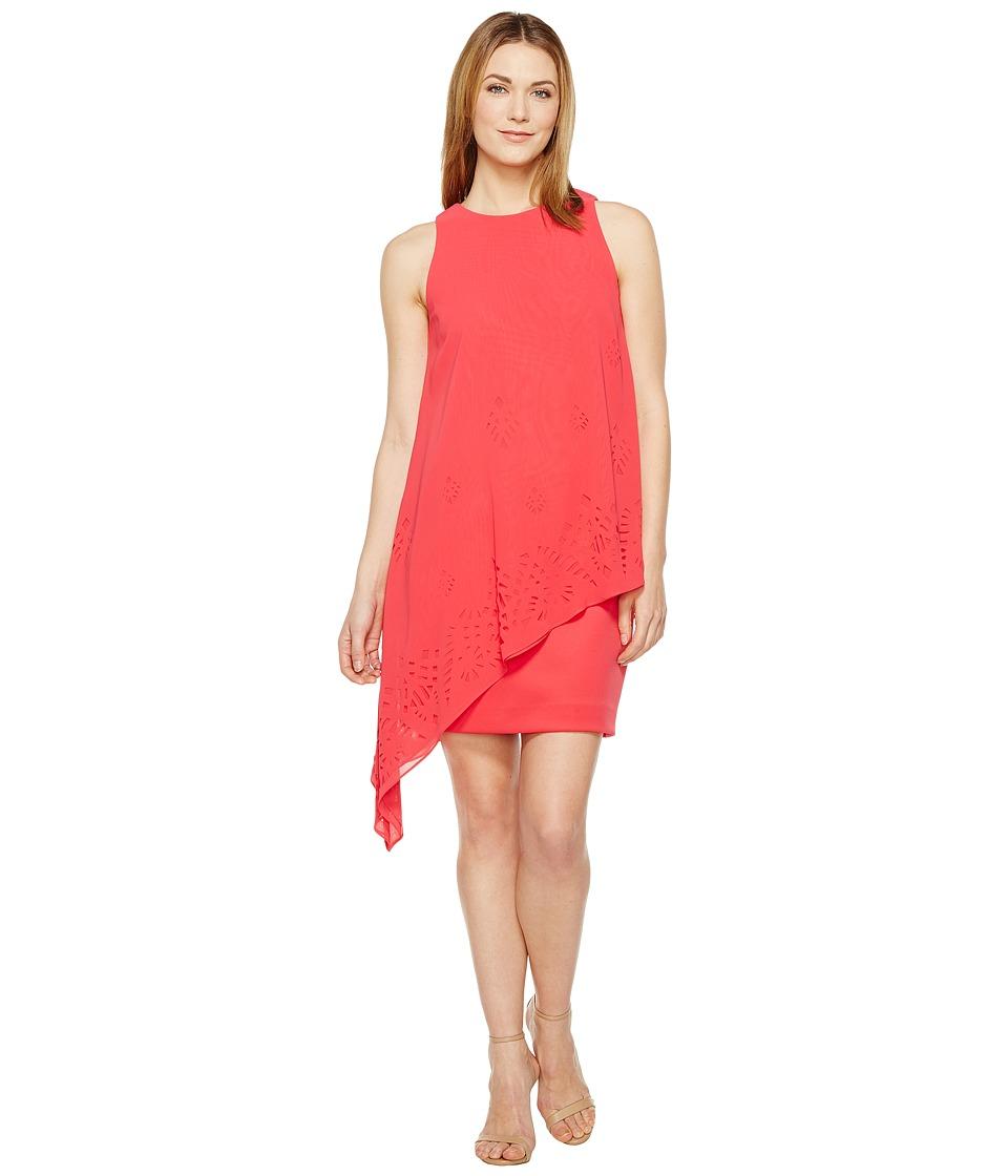 Tahari by ASL Lasercut Chiffon Dress (Rose) Women