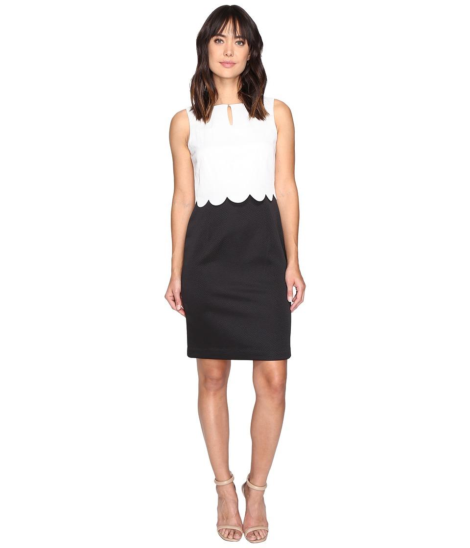 Ellen Tracy Pique Popover Dress (Black/Ivory) Women
