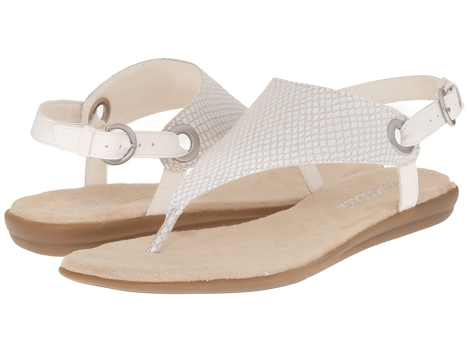 ceb2e56723c UPC 887740758718 product image for Aerosoles - Conchlusion (White Snake) Women s  Sandals