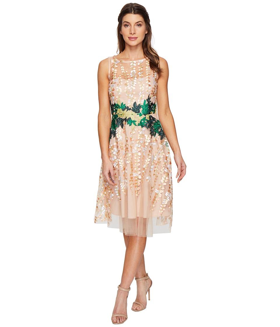 Eva by Eva Franco - Holly Dress (Oleander Lace) Women's Dress