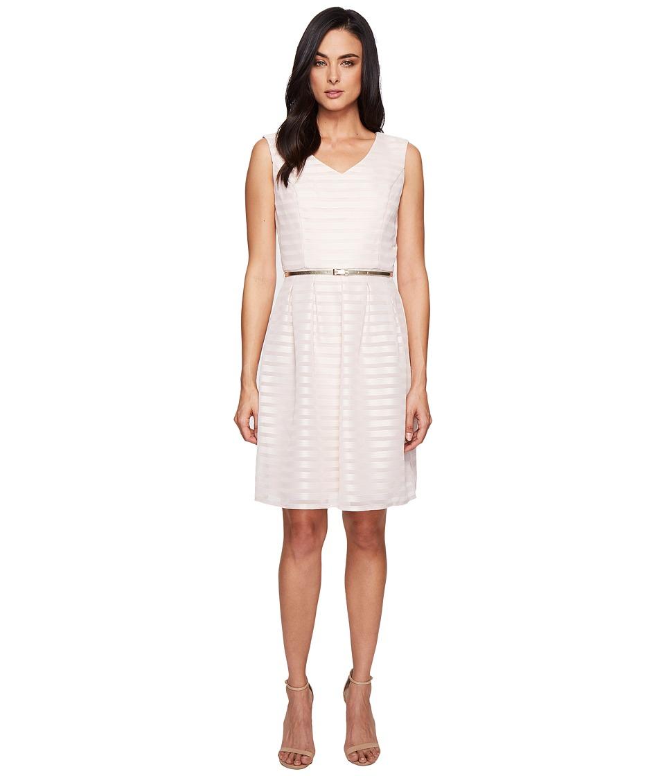 Ellen Tracy Sheer Stripe Dress (Blush) Women