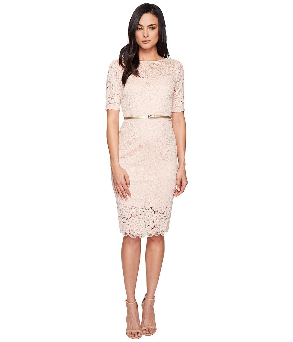 Ellen Tracy Floral Lace Dress (Blush) Women