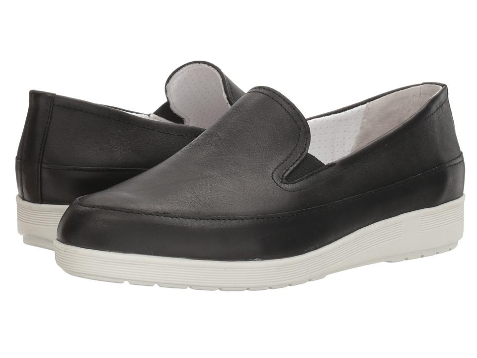 Spring Step - Lois (Black) Women's Shoes