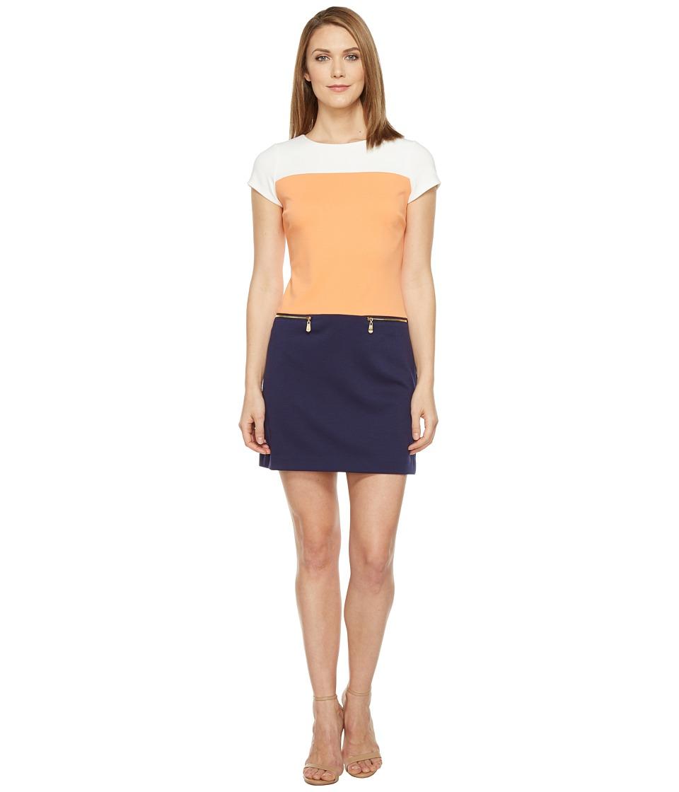 Ellen Tracy Color Block Ponte Dress (Multi) Women