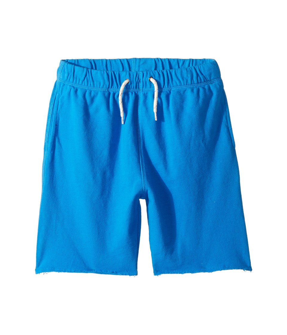 Appaman Kids - Super Soft Camp Shorts (Toddler/Little Kids/Big Kids) (French Blue) Boy's Shorts