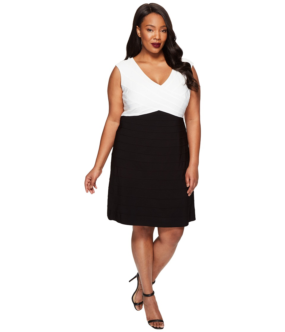 Adrianna Papell Plus Size Color Blocked Banded Fit and Flare (Black/Ivory) Women