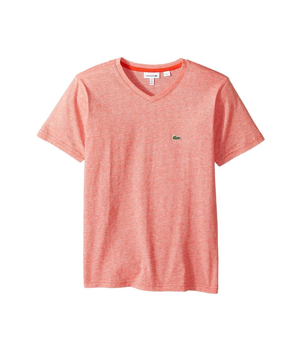 Lacoste Kids - Short Sleeve V-Neck Stripe Tee (Toddler/Little Kids/Big Kids) (Grenadine/White) Boy's T Shirt