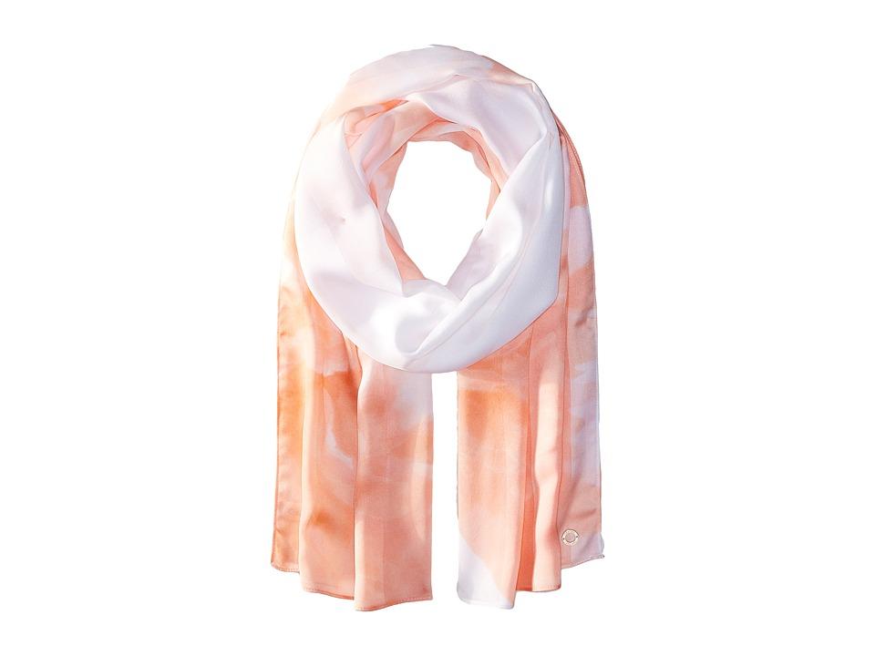Calvin Klein - Shadow Stripe Floral Chiffon (Blossom) Scarves