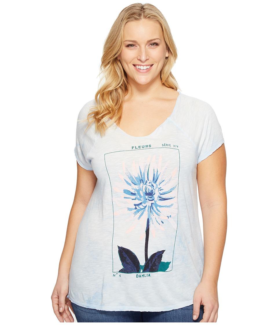 Lucky Brand - Plus Size Dahlia Tee (Skyway) Women's T Shirt