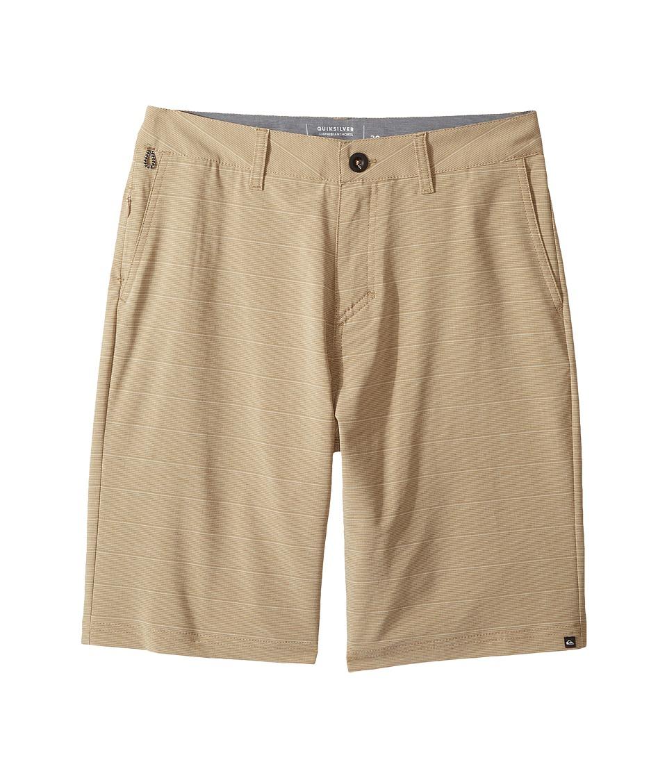Quiksilver Kids - Lines Amphibian 19 (Big Kids) (Elmwood) Boy's Shorts