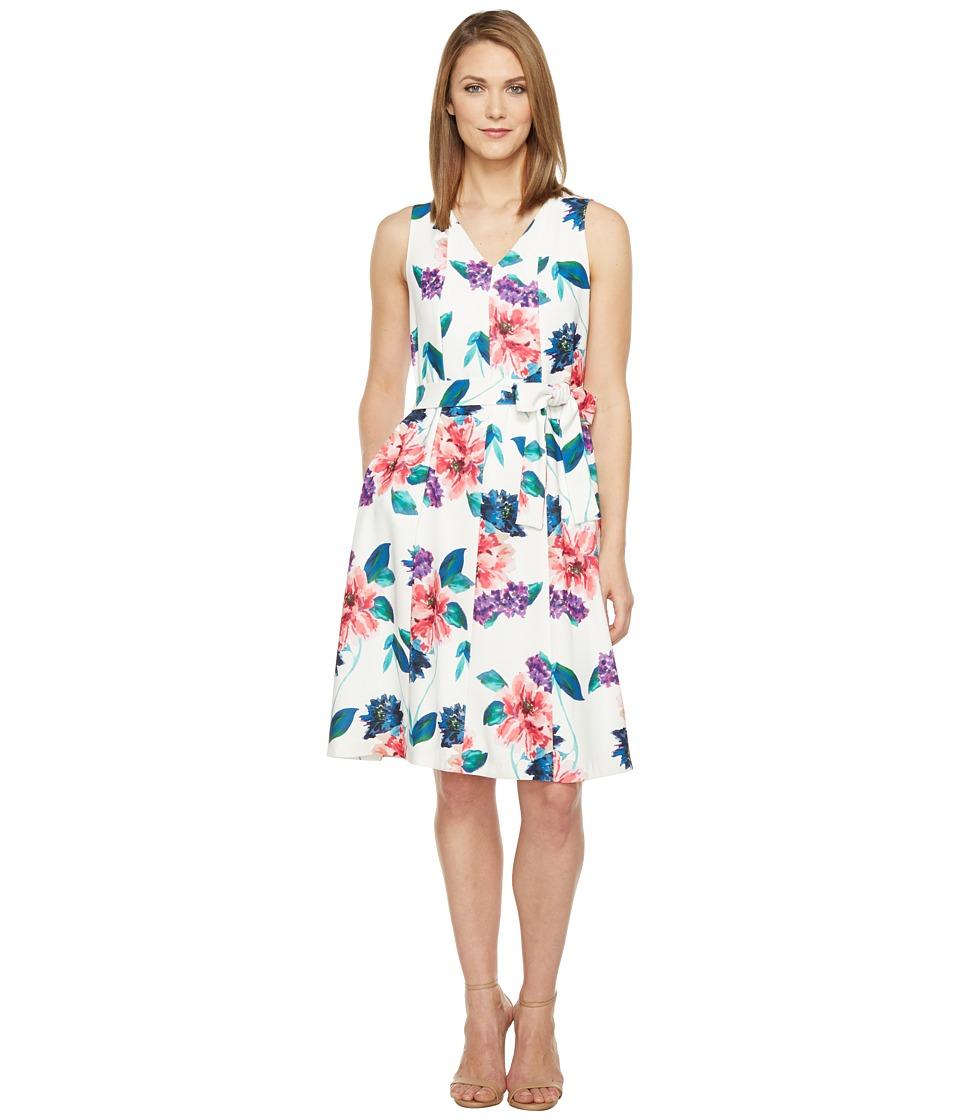 Ellen Tracy Seamed V-Neck Dress (Jardin E Cream) Women