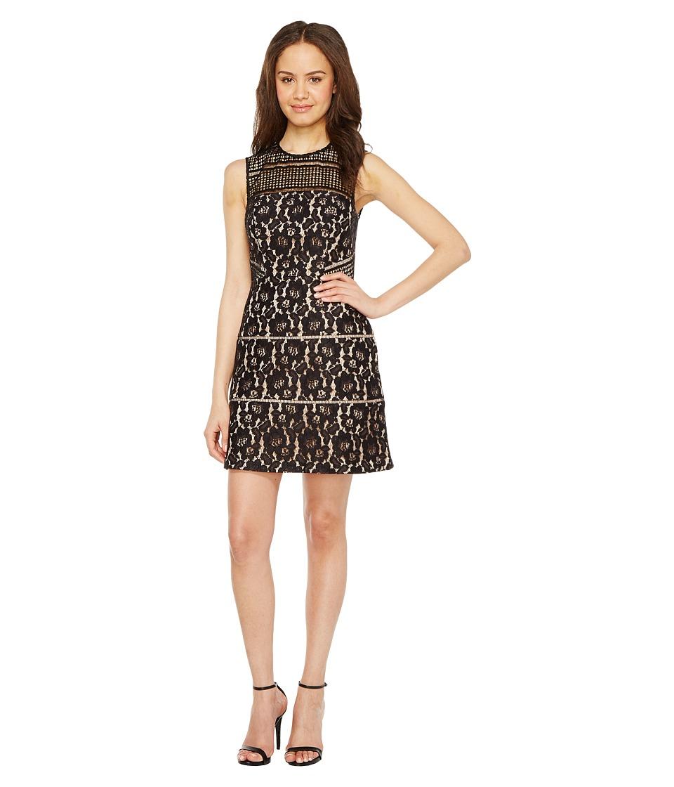 Aidan Mattox Sleeveless Lace Cocktail Dress (Black) Women